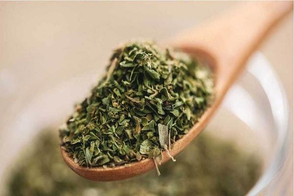 Oregano | healthy herbs for winters
